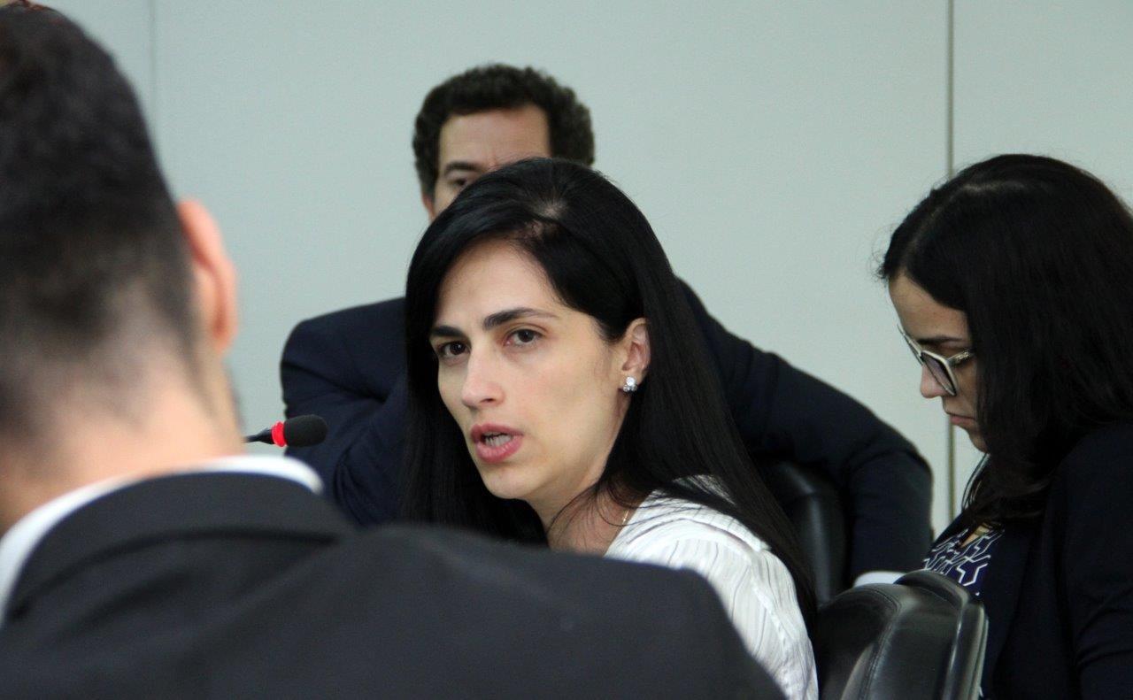 Diretora da Artesp diz que novos contratos de rodovia são adequados ao reequilíbrio na pandemia
