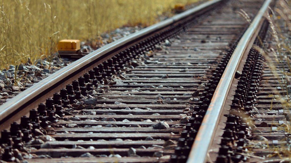 Dúvidas de investidores sobre Ferrogrão concentram-se em questões ambientais e de demanda