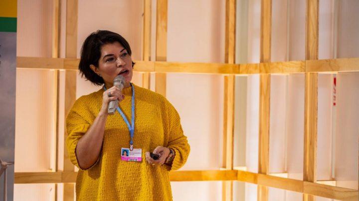 Elbia Gannoum, da Abeeólica: Fim do subsídio é avanço
