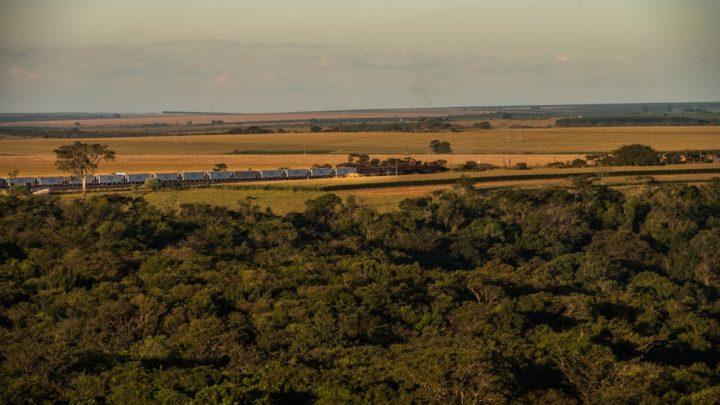 iNFRADebate: O próximo apito do trem no Corredor Centro-Leste
