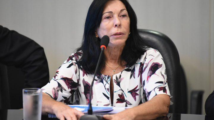 MP da Eletrobras tem menos viés arrecadatório que o PL, diz secretária-executiva do MME