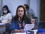 BR do Mar é aprovado com mudanças na CAE do Senado